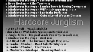 Hardcore Junglism - A Mix by Hardcore James - Jungle / Breakbeat Hardcore