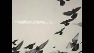 Venetian Snares - Hajnal (high quality)