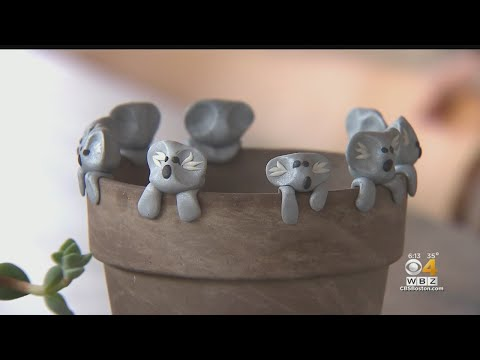 Andi and Kenny  - Daily Do Good: Kid Raises $100K For Australian Fires By Selling Clay Koalas