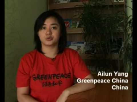 Climate Action Network: Statement 2009 UN Climate Change Summit