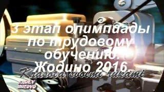 3 этап олимпиады по трудовому обучению в Жодино. 2016.