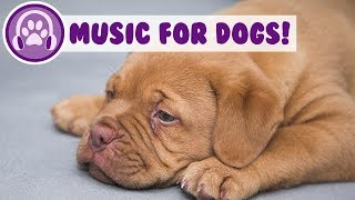 Relaxing Music for Dogs! Music to Help Sleep and Anxiety Problems!