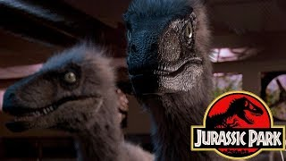 Jurassic World 3 May Include Some Feathered Dinosaurs