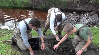 Exploring Research - Ichthyology - Sarah Trimm