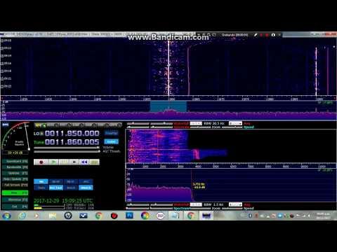 REPUBLIC OF YEMEN RADIO 11860 KHZ