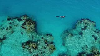Virtual Vacation: Reef Diving in Bermuda