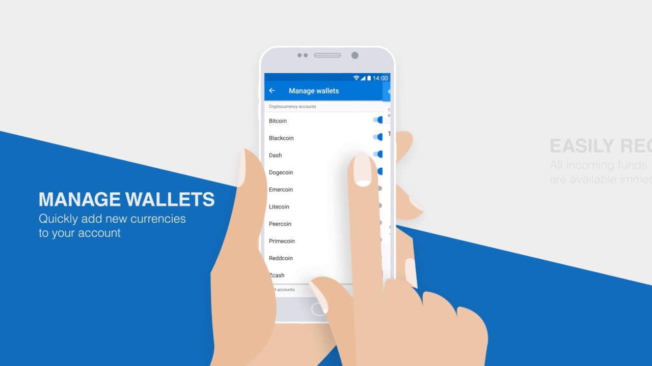 Cryptonator | Online Cryptocurrency Wallet | Instant