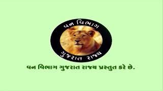 Gujarat forest. Mahesha thithkar van