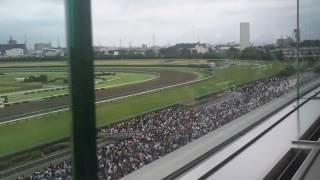 宝塚記念 最後の直線 キタサンブラックが沈んで行く.