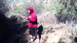 Izzy-D Poppin in Turnbull Canyon Rd. WHittier CA   01-19-2013