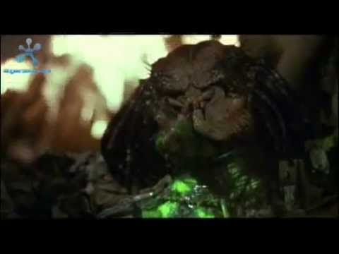 Austrian Death Machine  IF IT BLEEDS, WE CAN KILL IT - YouTube.flv