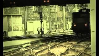 Csodabogarak - A városi hernyó (3.évad 9.rész)