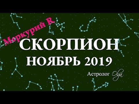 ГОРОСКОП - НОЯБРЬ 2019 для СКОРПИОНА. Меркурий Ретро. Астролог Olga