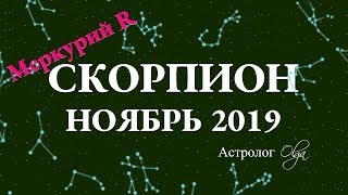 ГОРОСКОП   НОЯБРЬ 2019 для СКОРПИОНА. Меркурий Ретро. Астролог Olga