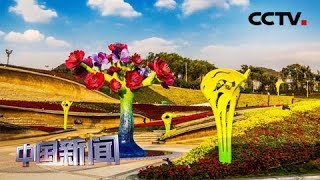 [中国新闻] 中秋将至 世园会邀您逛花艺 | CCTV中文国际