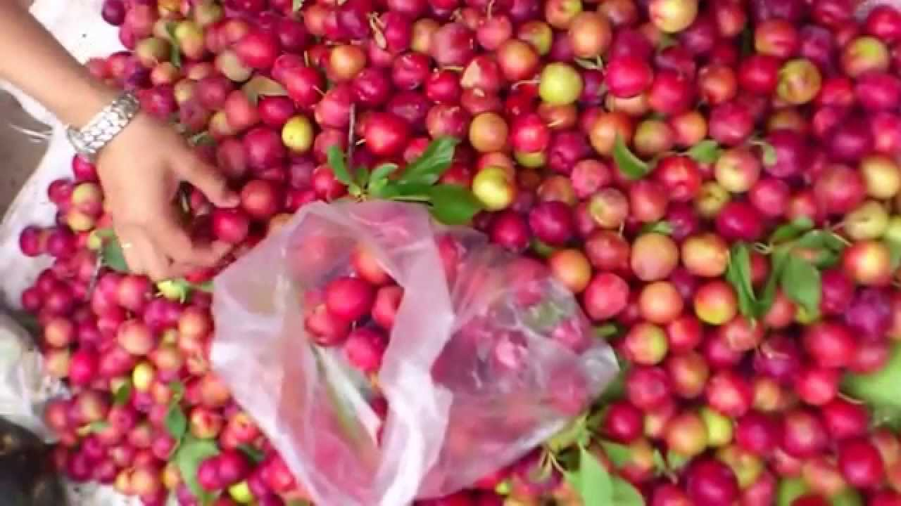fruits in Nepal - How to select fruit - YouTube