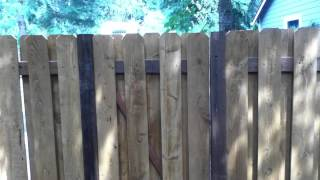 Fence Project With Discreet Gate
