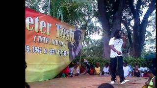 wild life  performing at Peter Tosh celebration Sun feb 24 2013