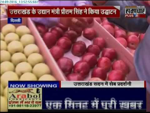 High Quality Apples of Uttarakhand, 'Apple a day keeps Doctor away'
