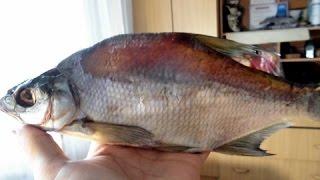 Вяленая рыба с прозрачной спинкой. Секреты рыночных продавцов..