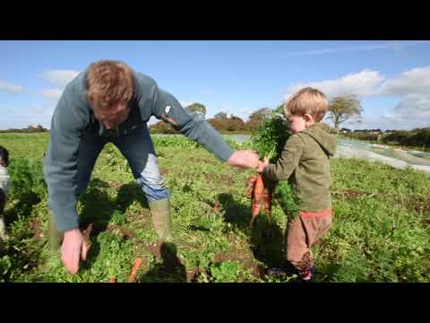 Sustainable organic farming
