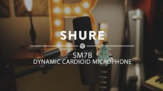 Shure SM7B Dynamic Cardioid Microphone | Reverb Demo Video
