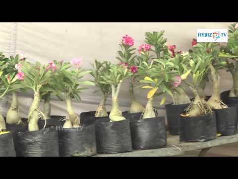 All India Horticulture & Agriculture Show 2016 - hybiz