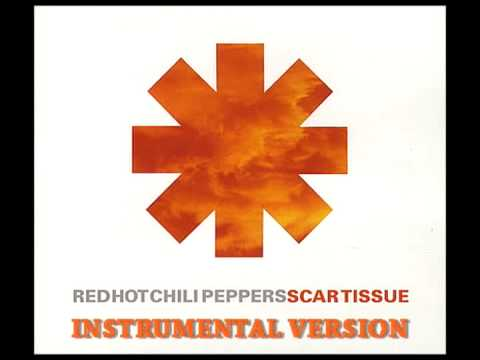 Red Hot Chili Peppers - Scar Tissue (Instrumental Version)