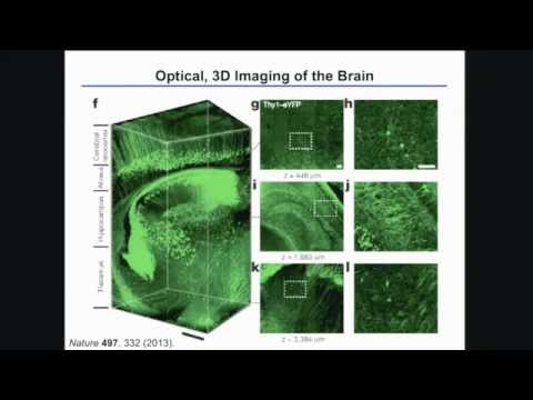 Implantable Optoelectronic and Microfluidic Systems for Neuroscience