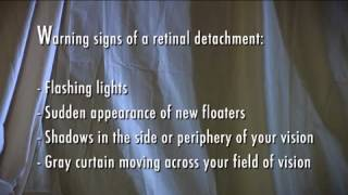 Waiting Room   Retinal Detachment   Floaters and Flashes