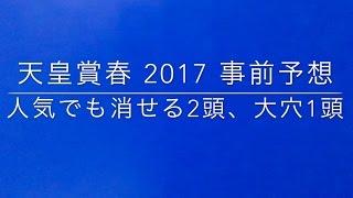 【競馬予想】 天皇賞春 2017 事前予想 thumbnail