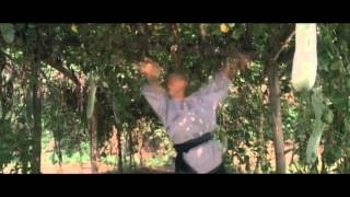 Praying Mantis - Martial arts of Shaolin (1986) Jet Li