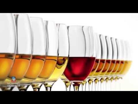 World of Wine: Wine chemistry