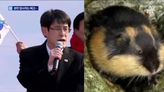 물난리 속 외유…'화들짝' 귀국한 도의원들 thumbnail