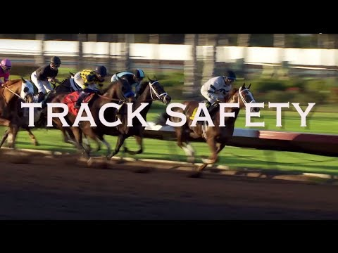 Rules of the Game | Track Safety