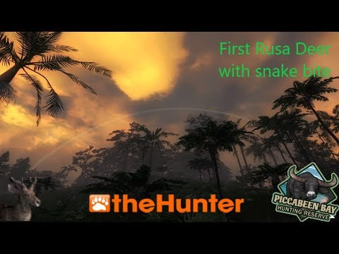 New  hunter map  Piccabeen Bay.   First  Rusa  Male! with snake bite.