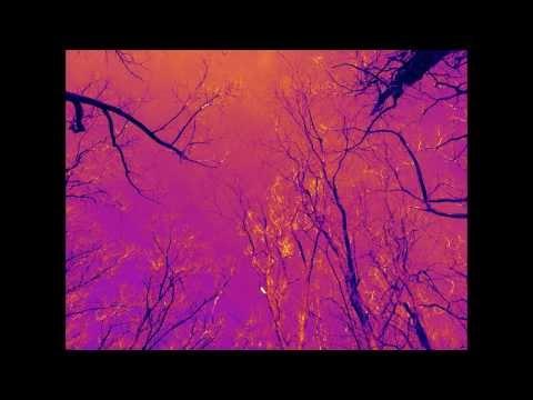 Heartbeating demo clip