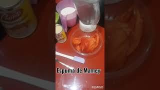 Espuma de mamey