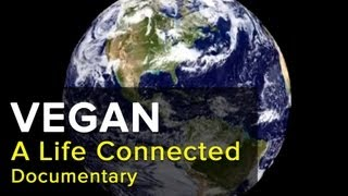 VEGAN: A Life Connected