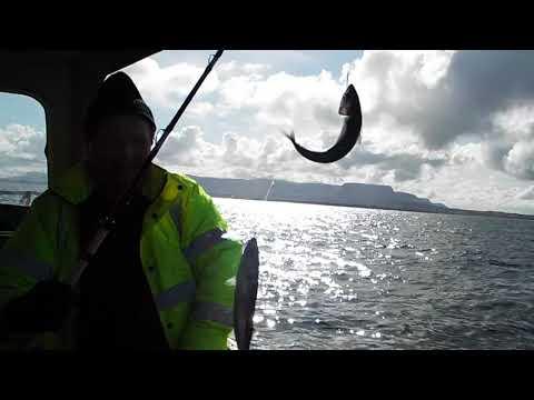 Early Mackerel With Sea Fishing Sligo!