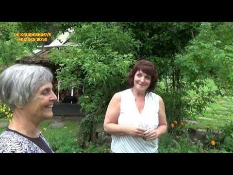 2016 - Promotiefilm gemaakt door vrijwilliger en PR-medewerker Roelof Overweg