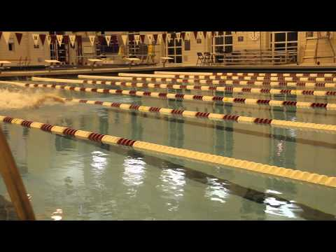 Carnegie Mellon Swim and Dive Crowdfunding 2014