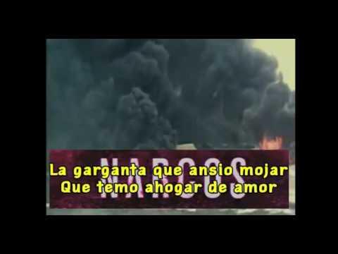 Narcos Opening Lyrics Tuyo By Rodrigo Amante Youtube