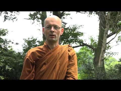 Wisdom วัดป่าจิตตวิเวก  Wat Pah Cittaviveka, Chithurst Buddhist Monastery