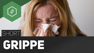 """Influenza - Die """"echte Grippe"""" - TheSimpleShort"""