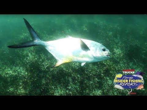 EXPERT Reports On Permit Fishing - 2019 | Florida Insider Fishing Report - Season 15, Episode 20