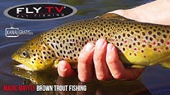 FLY TV - Magic Mayfly Brown Trout Fishing