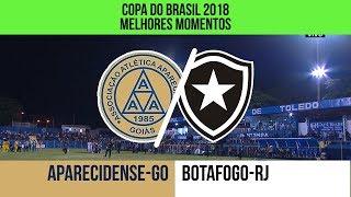 Melhores Momentos - Aparecidense-GO 2 x 1 Botafogo-RJ - Copa do Brasil - 06/02/2018