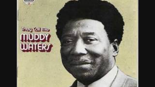 Muddy Waters- When The Eagle Flies