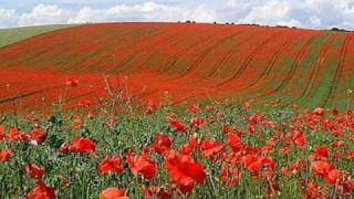 Watch John Mccrae In Flanders Fields video